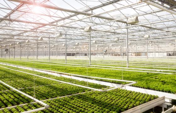农业视联网智能解决方案